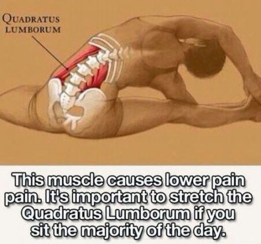 Stretches That Improve Different Parts Of Your Body