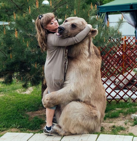 A Family With Pet Bear