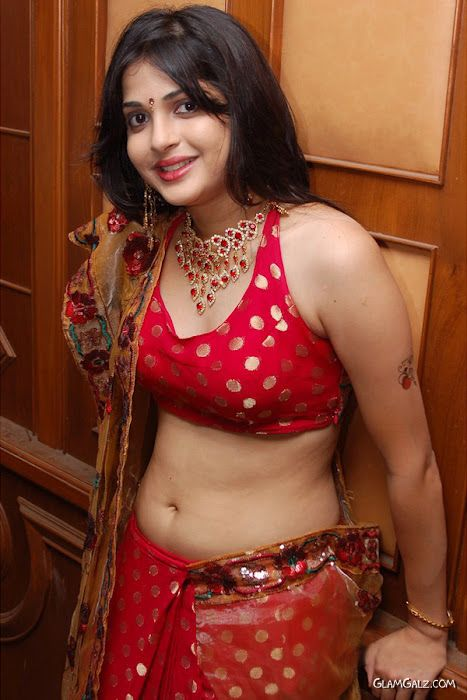 Tollywood Actress Nicole In Saree